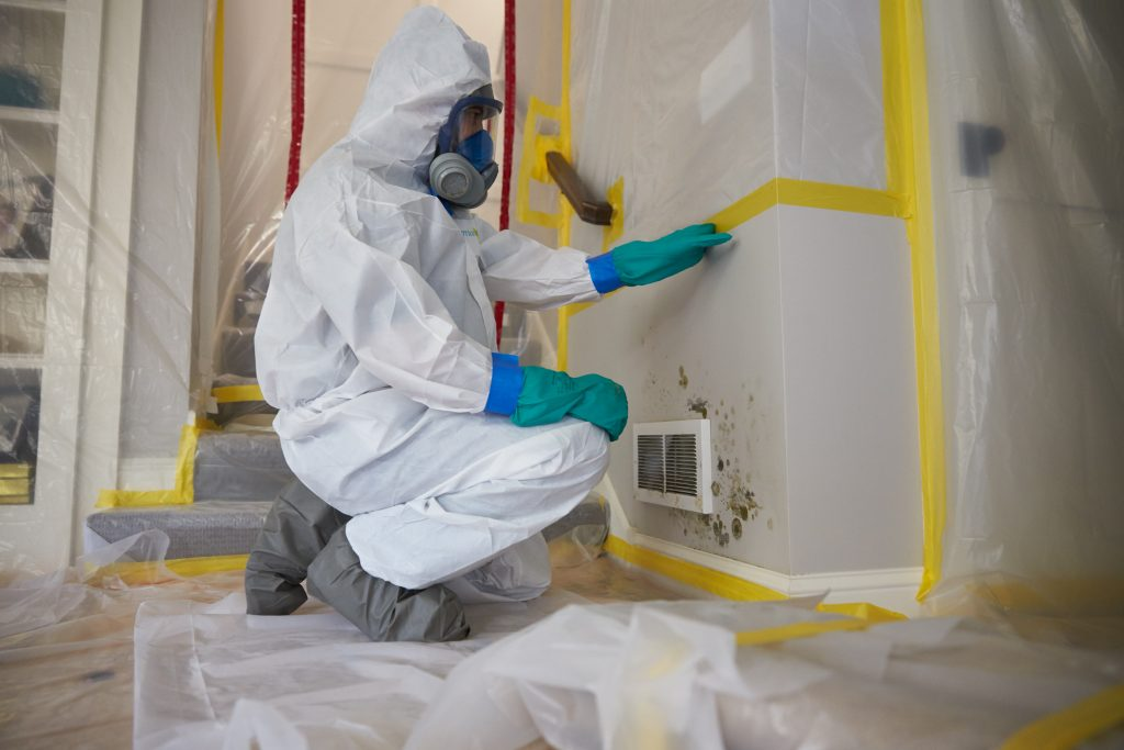 Why Professional Mold Inspection and Remediation is Important to your Health?