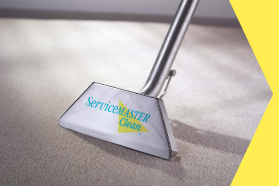Roswell, GA Carpet Cleaning Services | Conyers Carpet Cleaner