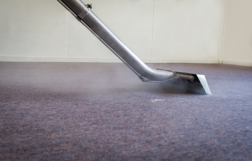 Methods to Stop Mold from Spreading in Your Carpets After a Water Damage