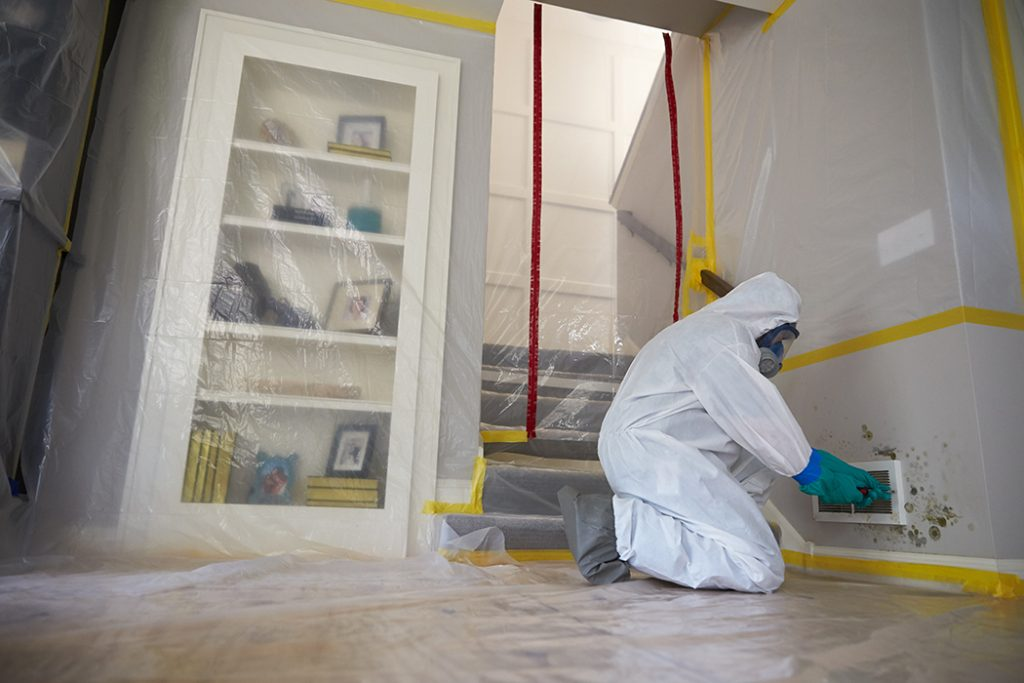 Mold Remediation in Atlanta