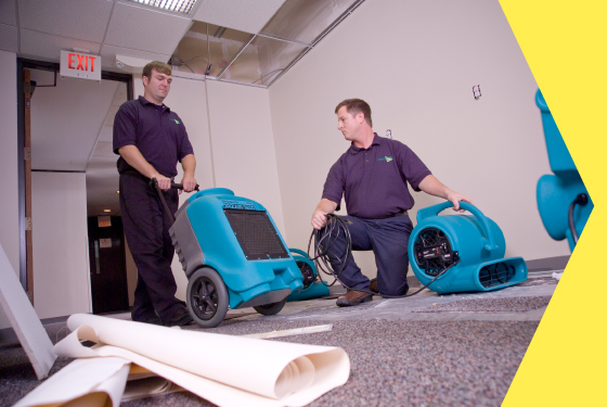 Structural Drying & Dehumidification in Florida