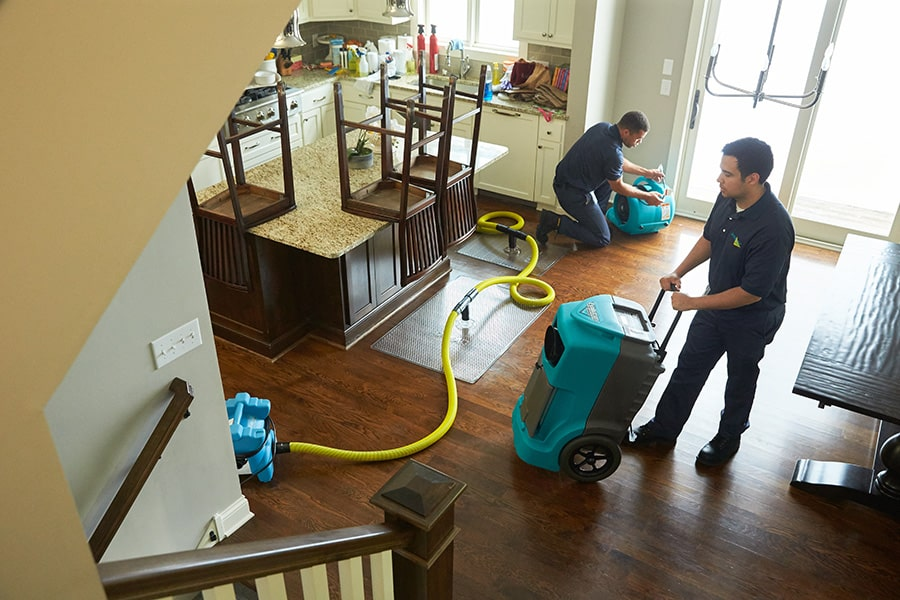 ServiceMaster by LoveJoy Personnel Cleaning