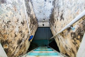 Dangers of Removing Basement Water on Your Own