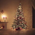 Christmas Tree Allery and Mold Causes